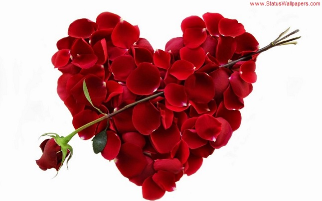 100+ Valentines Day 2019 Wallpaper | Valentines Day 2019 Messages and Images
